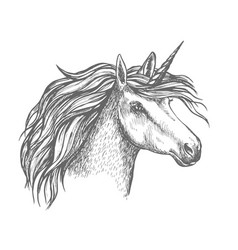 Mythic unicorn horse sketch vector