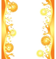 Citrus splash frame vector