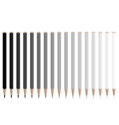 grey pencils vector image vector image
