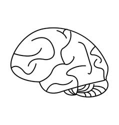 Human brain idea creativity outline vector