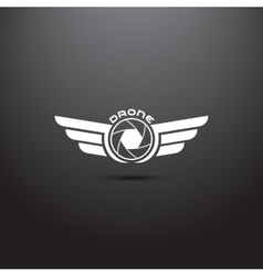 Quadrocopter business icon vector image