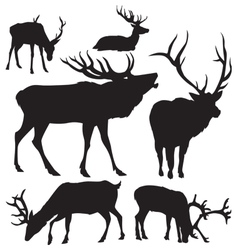 deer silhouettes 2 vector image vector image