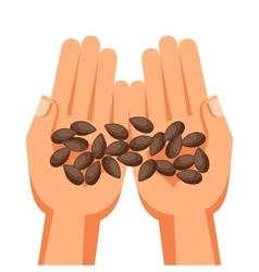 Human hands holding handful seeds vector