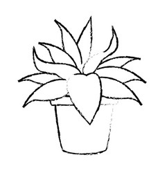 Potted plant nature leaf gardening decoration vector