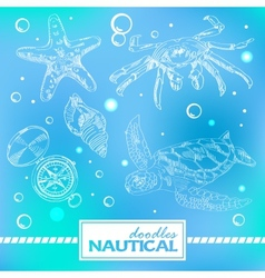 Set of nautical doodles with turtlesand crab vector