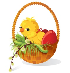 Easter card chicken and eggs in basket with sprig vector