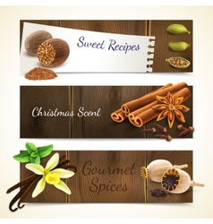 Spices banners horizontal vector