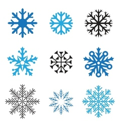 different snowflakes vector image
