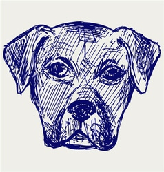 Portrait puppy vector