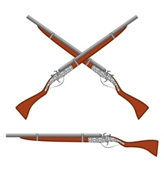 Ancient rifles vector image vector image
