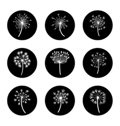 Black and white dandelion icon set vector image