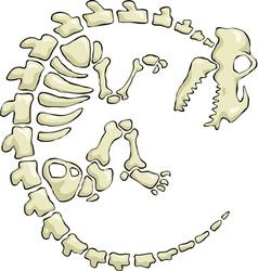 Dinosaur skeleton vector