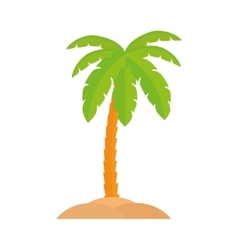 Palm tree icon Beach design graphic vector image