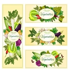Vegetables organic vegetarian food banners vector