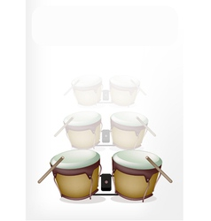 Bongo drum with sticks on white background vector