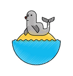 cute seal isolated icon vector image