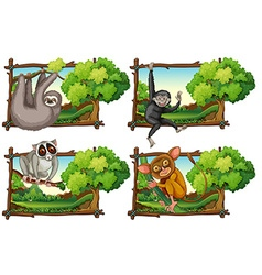 Wild animals haning on the branch vector image vector image