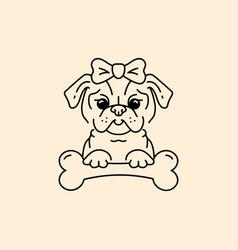 Pug icon cartoon face pug-dog with a bow and bone vector