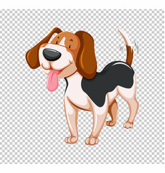 Little puppy on transparent background vector