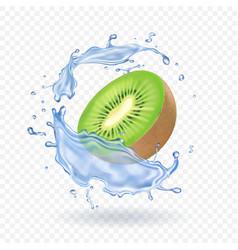 Kiwi fruit and water splash fruit fresh vector