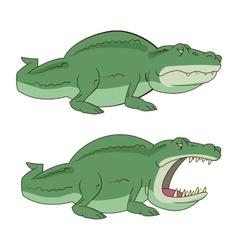 Crocodile alligator vector