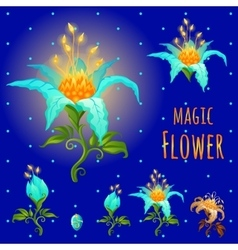 Blue glowing magic flowers stages of flowering vector
