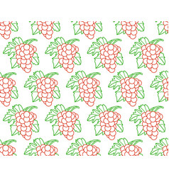 bunch of grapes contour pattern vector image vector image