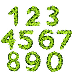 Font design for numbers with grass texture vector