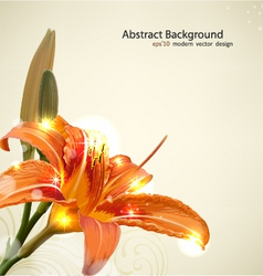Lily flower background vector