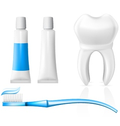 tooth and dental hygiene equipment vector image