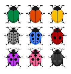 color ladybug set on white background vector image
