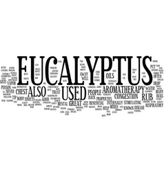 Eucalyptus text background word cloud concept vector