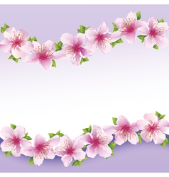 Stylish floral background greeting card with vector