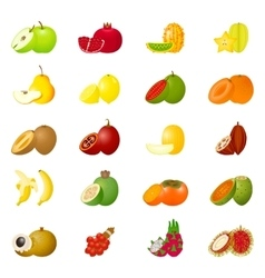 Icon set fruits vector