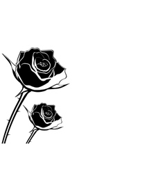 silhouette of rose flower on a white background vector image