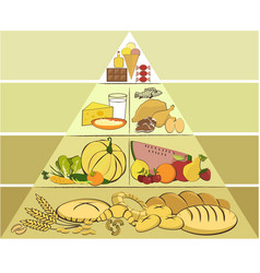 healthy food pyramid vector image