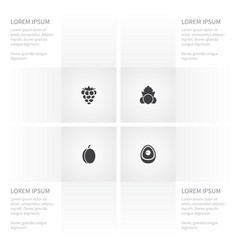 icon fruit set of leaf evergreen bramble and vector image