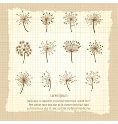 Vintage botanical poster with dandelion vector
