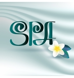 Handwritten word spa and flover vector