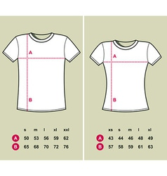 T-Shirt Sizes vector image
