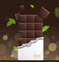 Chocolate package bar blank - dark pieces vector