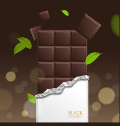 chocolate package bar blank - dark pieces vector image vector image