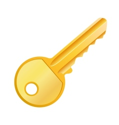 Gold key vector image