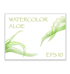 Green watercolor aloe vector