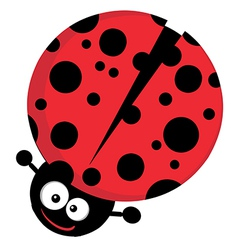 Lady bug cartoon vector