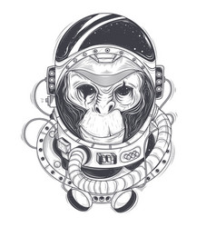 hand drawn of a monkey vector image