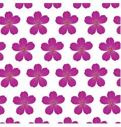 plumeria flower purple wallpaper decoration vector image