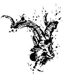 Grunge of goat vector image