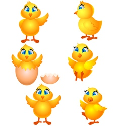 Little group chicken cartoon vector
