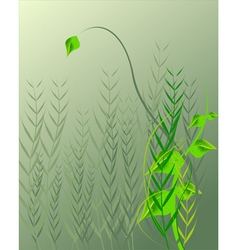 Droplets on leaf vector